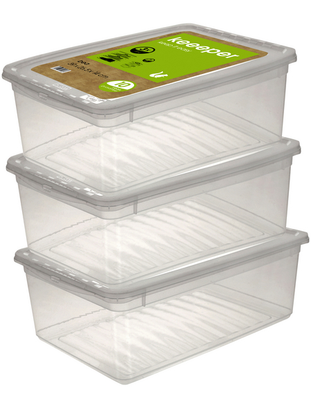 Aufbewahrungsbox »Bea«, BxHxL: 39 x 14 x 26,5 cm, Kunststoff