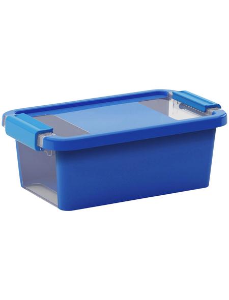 KIS Aufbewahrungsbox »Bi«, BxHxL: 26,5 x 10 x 16 cm, Kunststoff