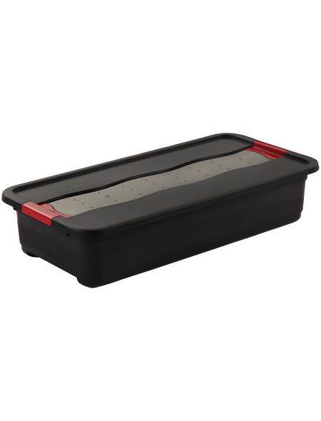 KEEEPER Aufbewahrungsbox »Solido«, BxHxL: 39,5 x 17 x 79,5 cm, Kunststoff
