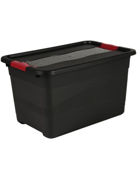 KEEEPER Aufbewahrungsbox »Solido«, BxHxL: 39,5 x 34 x 59,5 cm, Kunststoff