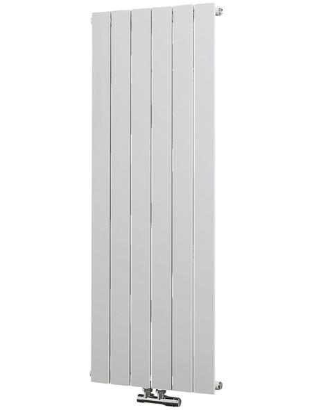 SCHULTE Badheizkörper »Aachen«, B x T x H: 46,4 x 7,5 x 120 cm, 621 W, alpinweiß