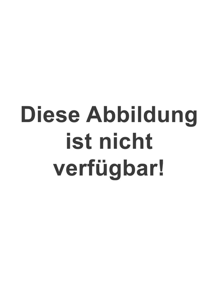 SCHÖNER WOHNEN FARBE Voll- und Abtönfarbe, terracotta, 250 ml