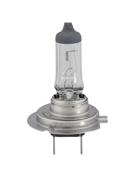 PHILIPS Halogenlampe, VisionPlus, H7, PX26d, 55 W, 1 Stück