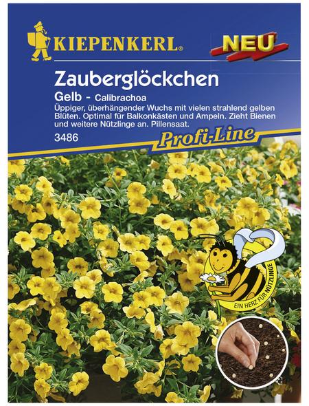 KIEPENKERL Kiepenkerl Saatgut, Zauberglöckchen, Calibrachoa gelb, Einjährig