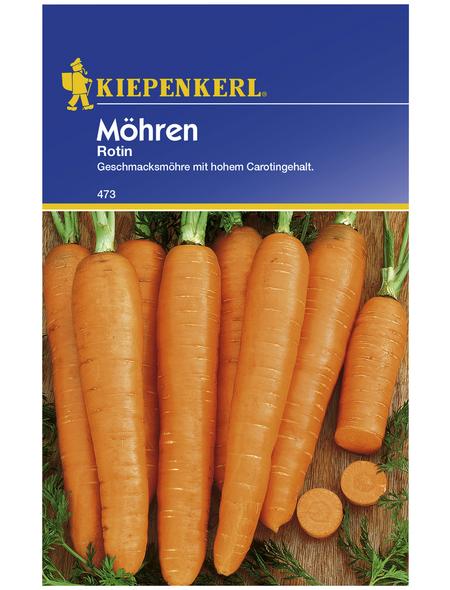 KIEPENKERL Möhre carota ssp. sativus Daucus
