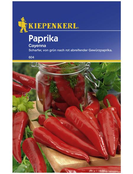 KIEPENKERL Paprika annuum Capsicum
