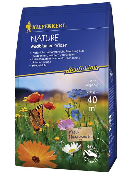 KIEPENKERL Premium-Samenmischung »Kiepenkerl Profi-Line Rasen«
