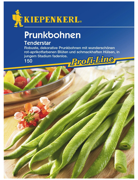 KIEPENKERL Prunkbohne coccineus Phaseolus »Tenderstar«