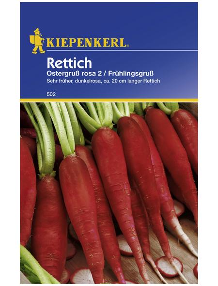 KIEPENKERL Rettich sativus Raphanus