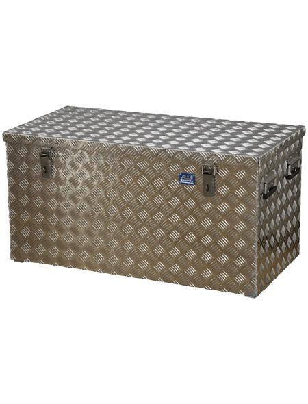 ALUTEC Riffelblechbox, LxBxH: 1022 x 519 x 525 mm, Blech