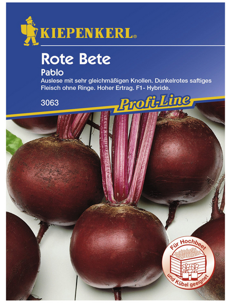KIEPENKERL Rote Bete vulgaris subsp. Vulgaris Beta