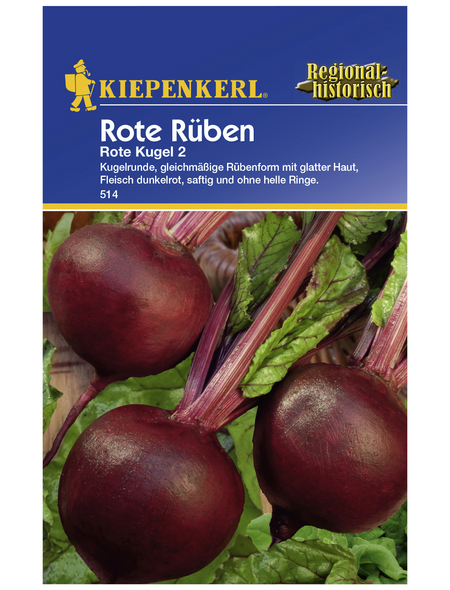 KIEPENKERL Rote Rübe vulgaris var. Vulgaris Beta