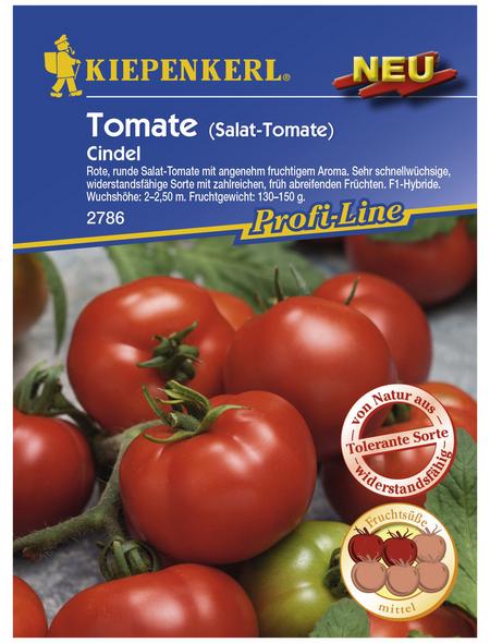 KIEPENKERL Salat-Tomate lycopersicum Solanum »Cindel F1«