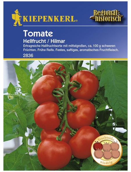 KIEPENKERL Salat-Tomate lycopersicum Solanum »Hilmar«