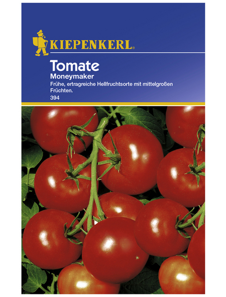 KIEPENKERL Salat-Tomate lycopersicum Solanum »Moneymaker«