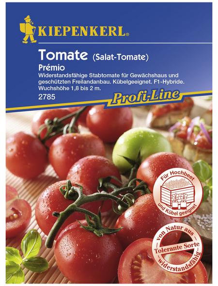 KIEPENKERL Salat-Tomate lycopersicum Solanum »Premio«