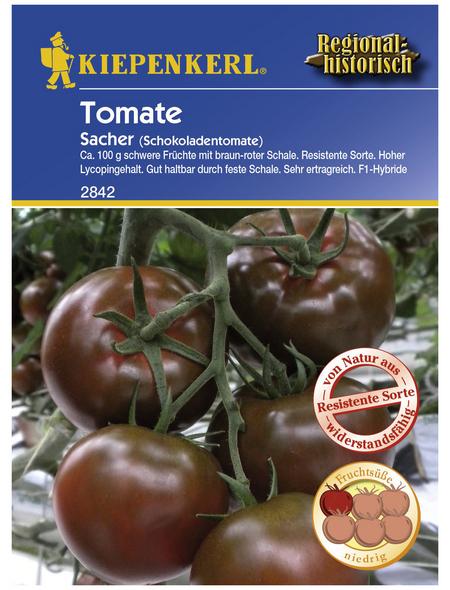 KIEPENKERL Salat-Tomate lycopersicum Solanum »Sacher«