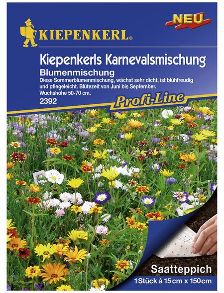 """KIEPENKERL Samenmaier Beet-Box """"Blüten aufs Teller!"""""""