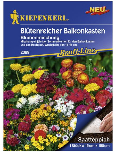 """KIEPENKERL Samenmaier Beet-Box """"Für die Gartenfee"""""""