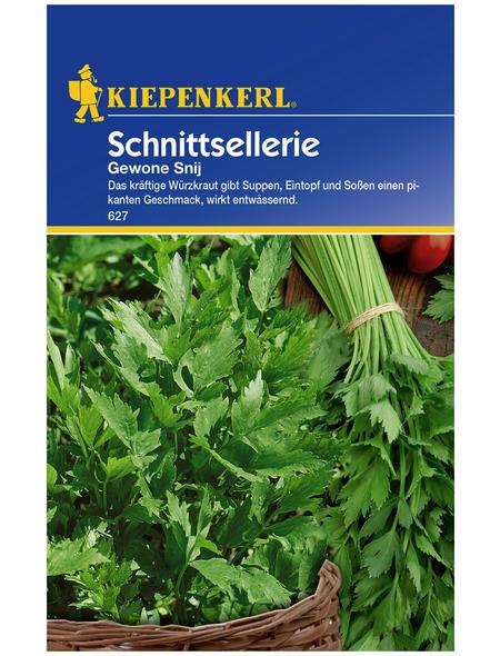 KIEPENKERL Schnittsellerie Apium graveolens var. secalinum »Gewone Snij«