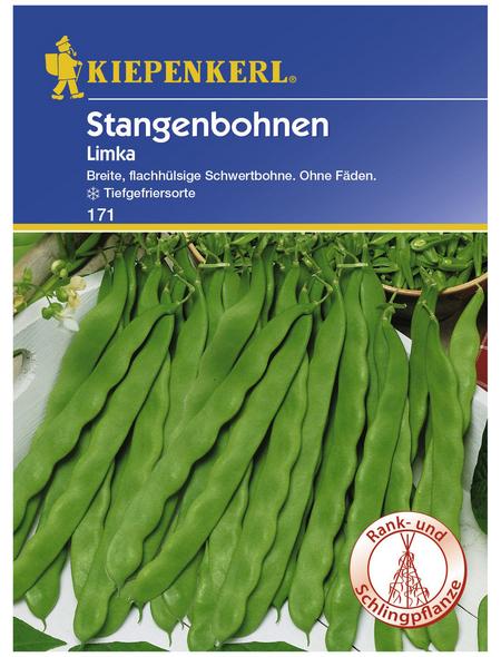 KIEPENKERL Stangenbohne vulgaris var. vulgaris Phaseolus »Limka«