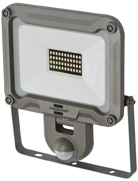 Brennenstuhl® Strahler »JARO 3000M«, 30 W, inkl. Bewegungsmelder