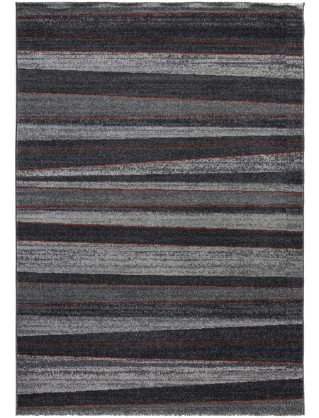 ANDIAMO Teppich »Alicante«, BxL: 80 x 150 cm, grau