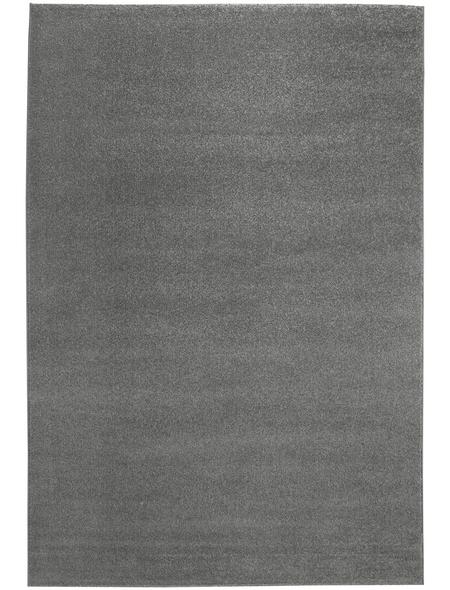 ANDIAMO Teppich »Jerez«, BxL: 67 x 140 cm, hellgrau