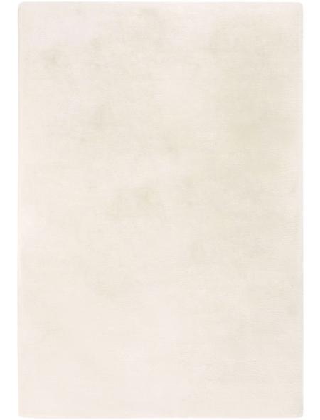 ANDIAMO Teppich »Novara«, BxL: 60 x 120 cm, beige