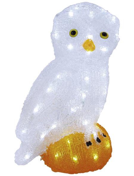 KONSTSMIDE Weihnachtsfigur, Eule, Höhe: 36 cm, Netzbetrieb