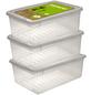 Aufbewahrungsbox »Bea«, BxHxL: 39 x 14 x 26,5 cm, Kunststoff-Thumbnail