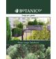 Bergkiefer mugo Pinus »Jacobsen«-Thumbnail