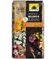 NEUDORFF Bio-Blumenerde »NeudoHum«, für Zimmer-, Balkon- und Terrassenpflanzen-Thumbnail
