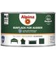 alpina Buntlack, grün , glänzend-Thumbnail