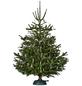 Krinner Christbaumständer »Premium L«, für max. Baumhöhe 270 cm, max. Stamm-Ø 12 cm-Thumbnail