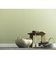 Schöner Wohnen Dispersionsfarbe »Naturell«, Birkengrün, matt-Thumbnail