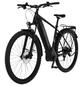 "FISCHER FAHRRAEDER E-Bike All-Terrain »TERRA 5.0i«, 29"", 10-Gang, 14 Ah-Thumbnail"