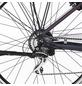 "FISCHER FAHRRAEDER E-Bike »ETD 1806«, 28"", 24-Gang, 11.6 Ah, Trapez-Thumbnail"