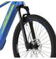 "FISCHER FAHRRAEDER E-Bike Mountainbike »MONTIS 6.0i«, 29"", 12-Gang, 14 Ah-Thumbnail"