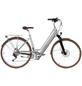 "ALLEGRO E-Citybike »Invisible City Plus«, 26 "", 7-Gang, 10.4 Ah-Thumbnail"