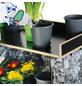 BELLISSA Gabionenpflanztisch, BxHxL: 48,5 x 90 x 94,5 cm, stahl/birkenholz-Thumbnail