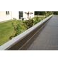 SKANHOLZ Gartenhaus »Sydney 2«, BxT: 253 x 169 cm (Aufstellmaße), Flachdach-Thumbnail