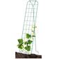BELLISSA Gemüse- und Gurkengitter, BxH: 77 x 121 cm, Stahl-Thumbnail