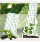 BELLISSA Gemüse- und Gurkengitter, Stahl-Thumbnail