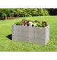 JUWEL Hochbeet, Timber, LxBxH: 130 x 50 x 80 cm, Kunststoff-Thumbnail