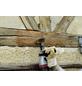 WOLFCRAFT Holz-Struktur-Bürste Ø 80 mm-Thumbnail