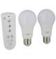 SCHWAIGER LED-Leuchtmittel »HOME4YOU«, 9 W, E27, warmweiß/tageslichtweiß/neutralweiß-Thumbnail