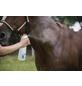 BALLISTOL Mückenschutzmittel Tiere, Ballistol Animal, 0,1 l-Thumbnail