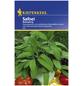 KIEPENKERL Salbei officinalis Salvia-Thumbnail