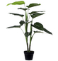 mica® decorations Seidenblume, Kunstpflanze, 4 Stück-Thumbnail